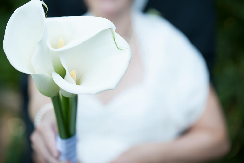 Hochzeitsfoto Paar Fotoshooting